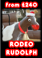 Hire Rudolph Reindeer for Christmas